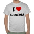 The auditors didn't like my new shirt :(